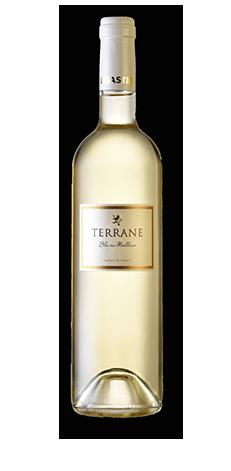 TERRANE sweet white wine